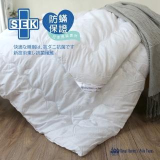 【R.Q.POLO】防蹣抗菌舒棉被(被胎-標準雙人6x7尺)