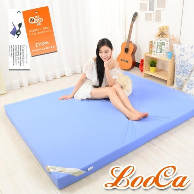 【LooCa】抗菌防蹣防水10cm彈力記憶床墊(雙5尺)