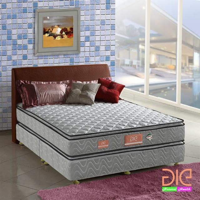 【aie享愛名床】竹碳+3M防潑水+記憶膠真四線彈簧床墊-雙人5尺(經濟型)
