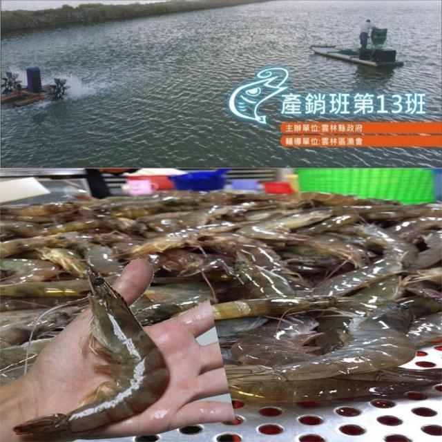 【雲林產銷班第13班】黃金白蝦2盒(600g/盒 約42-48隻)