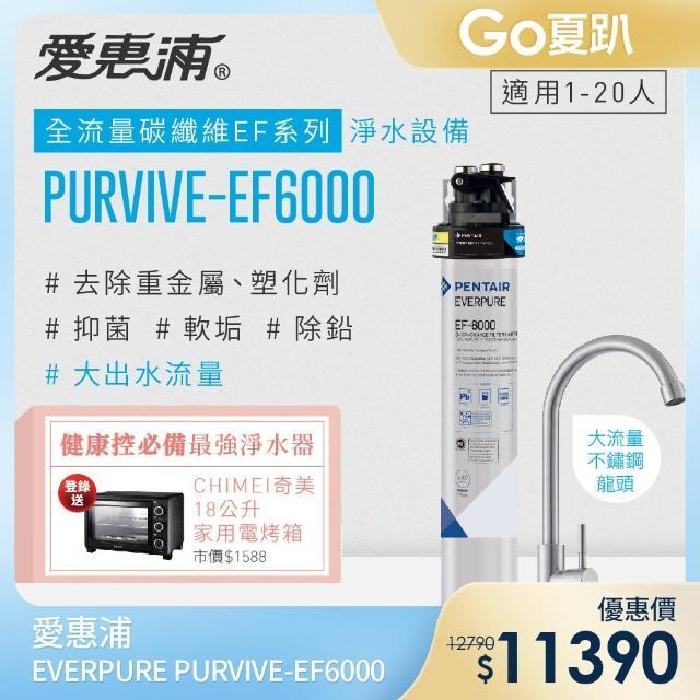 【EVERPURE 愛惠浦】全流量強效碳纖維系列淨水器(PURVIVE-EF6000)