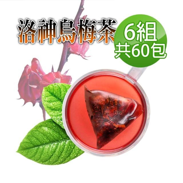 【蔘大王】洛神烏梅茶 油切美妍助消化(6gx10包/X6組)(冷熱兩用/輕盈靈活/逆轉人身)