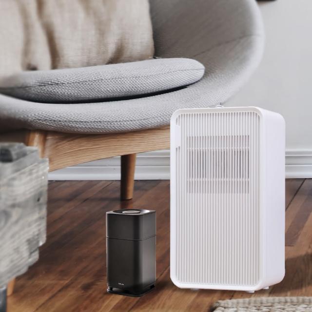 【Roommi】AIR6 奈米光觸媒負離子 雙效空氣淨化器+2公升輕量除濕機
