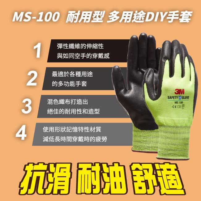 M03-MS100-5.jpg