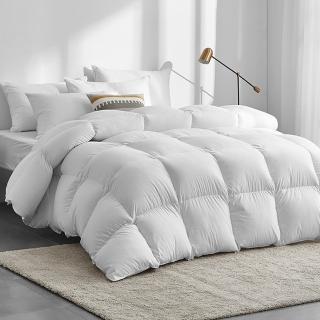 【A-nice】台灣製 專櫃等級 頂級JIS日規 極保暖型 95%頂級天然鵝絨被(雙人加大 8X7呎)