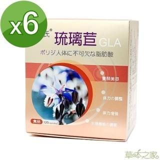 【草本之家】琉璃苣油軟膠囊(120粒X6盒)