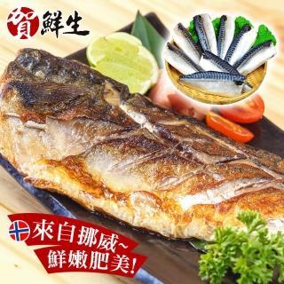 【賀鮮生】超厚片挪威薄鹽鯖魚30片(190g/片)