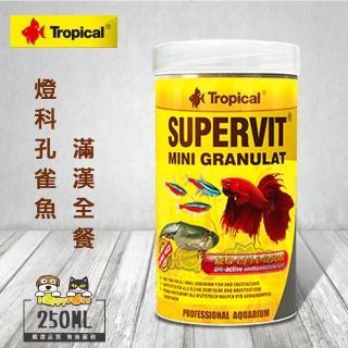 【Tropical】燈科、孔雀魚滿漢全餐(250ml)