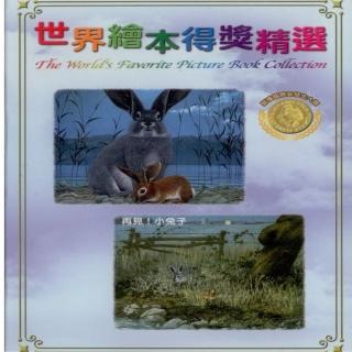 【世界繪本得獎精選10】再見!小兔子DVD(國際安徒生大獎)