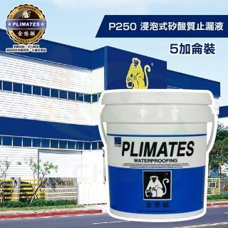 【金絲猴】《堵漏材》浸泡式矽酸質止漏液P-250(5加侖裝)