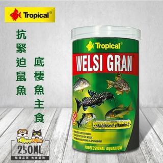 【Tropical】德比克抗緊迫鼠魚、底棲魚主食(250ml)