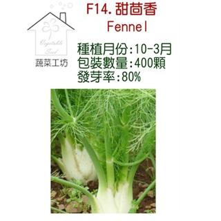 【蔬菜工坊】F14.甜茴香種子