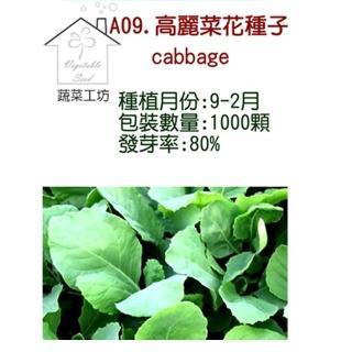 【蔬菜工坊】A09.高麗菜花種子