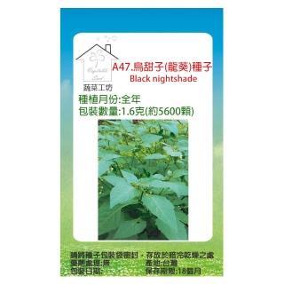 【蔬菜工坊】A47.烏甜子種子(龍葵)