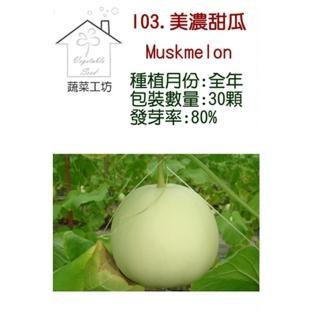 【蔬菜工坊】I03.美濃甜瓜種子