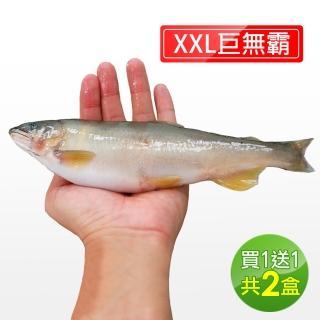 【直播限時搶X買一送一】宜蘭特選巨無霸XXL爆卵香魚1盒(1kg/盒-再加碼1盒.共2盒)