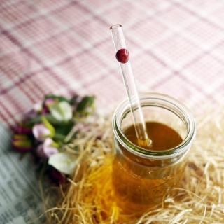 【美國strawesome】手工玻璃吸管/標準直式(莓果紅)