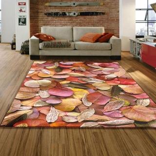 【范登伯格】專業3D印染絲質地毯 交織 150x230cm