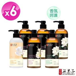 【古寶無患子】小蒼蘭香氛獨寵組(洗髮X2 沐浴X3 身體乳液X1)