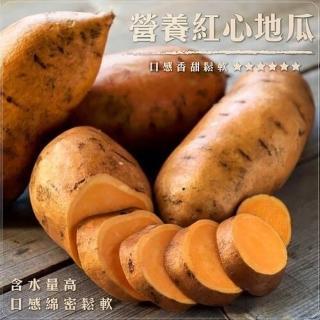 【WANG 蔬果】台農66號紅心地瓜(10斤±10%)