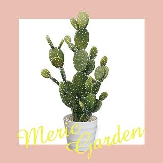 【Meric Garden】北歐風格居家裝飾高仿真大型景觀植栽擺設盆栽(扇型仙人掌)