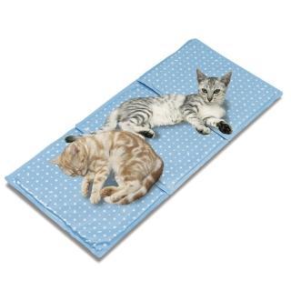 【Marukan】多貓用保冷軟墊(CT-264)