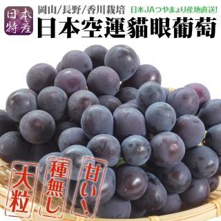 【WANG 蔬果】日本岡山貓眼葡萄(2房/每房約700g±10%含盒重)