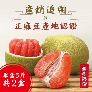 【老張果物】麻豆養生紅文旦 5斤禮盒 共2盒裝(5斤±10%/盒)
