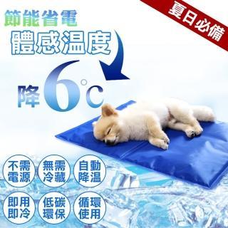 【夢工廠 冰墊XL號90*50cm】寵物冰墊XL號 貓狗冰墊 人寵可用(筆電散熱 涼墊 降溫 狗窩 貓床 椅墊 涼爽)