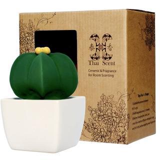 【Thai Scent 泰香】星星仙人掌擴香精禮盒(三款香氣任選)