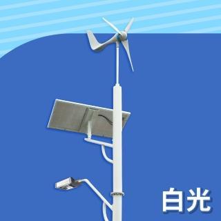 【DIGISINE】DS-001 風光互補智能路燈-12V系統/2000流明/白光(太陽能發電/風力發電機/戶外照明路燈)