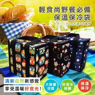 【DF Queenin】輕食尚野餐必備保溫保冷袋-隨機出貨