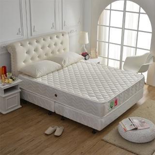 【睡芝寶】3M防潑水抗菌高蓬度機能獨立筒床墊(雙人5尺)
