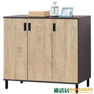 【綠活居】蘭迪   時尚4尺三門鞋櫃/玄關櫃