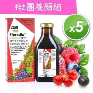 【歐洲屋】德國草本液-Floradix鐵元250ml(5瓶超值組)