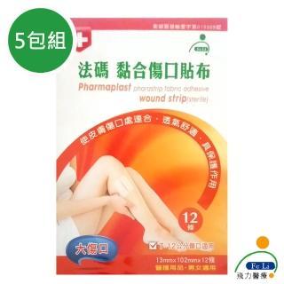 【Fe Li 飛力醫療】砝碼 黏合傷口貼布/美容膠帶(大傷口-五包組)