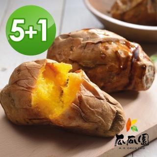 【瓜瓜園】冰烤番薯買5大贈1小(900g/盒*5+贈350g/盒*1)