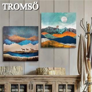 【hoi!】TROMSO時尚無框畫兩入組/百岳大境