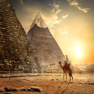 一眼萬年古埃及五星尼羅河遊輪10日(M)
