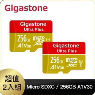 【Gigastone 立達國際】256GB micro SDXC UHS-Ⅰ U3 記憶卡超值2入組(256G A1V30 高速記憶卡)
