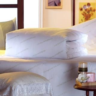 【YES】涼夏親膚型 純天然100%AA級蠶絲被 雙人豪華加寬型(7×7尺 淨重3台斤)(天然純蠶絲領導品牌)