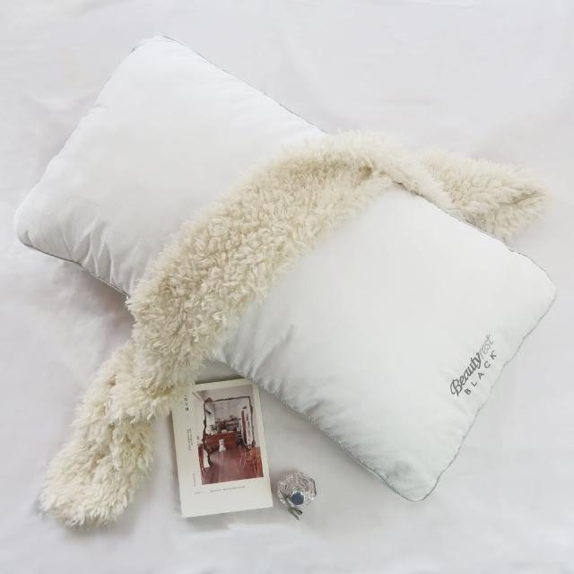 【美國席夢思BeautyRest旗艦品牌】黑標枕頭2入(Standard