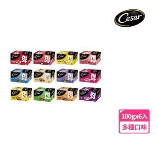 【Cesar 西莎】經典美味餐盒100g*6入(狗罐/犬罐)