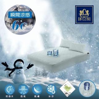 【NINO1881】急凍防潑水床包式冰絲涼墊-雙人(紡研所瞬間涼感保證+冰絲表布+杜邦防潑水+床包式設計)