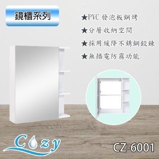 【Cozy衛浴】鋼琴烤漆 PVC發泡板 鏡櫃 鏡箱 收納鏡櫃 寬60x深15x高70cm(CZ-6001)