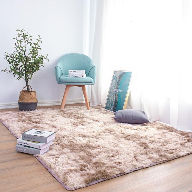 【Effect】現代簡約加厚長毛絨毛防滑地毯(80X160cm)/