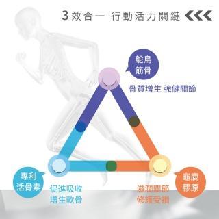 【御典堂】龜鹿鴕鳥精膠囊6盒(關節勇固 強健關節 腳骨勇健)