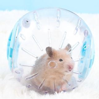 大款16cm倉鼠運動跑球1個(倉鼠球 倉鼠玩具球 寵物球)