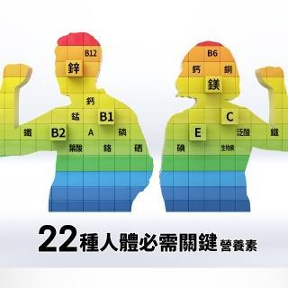 【銀寶善存】50+綜合維他命禮盒 共260錠(非常時期 提升保護力)